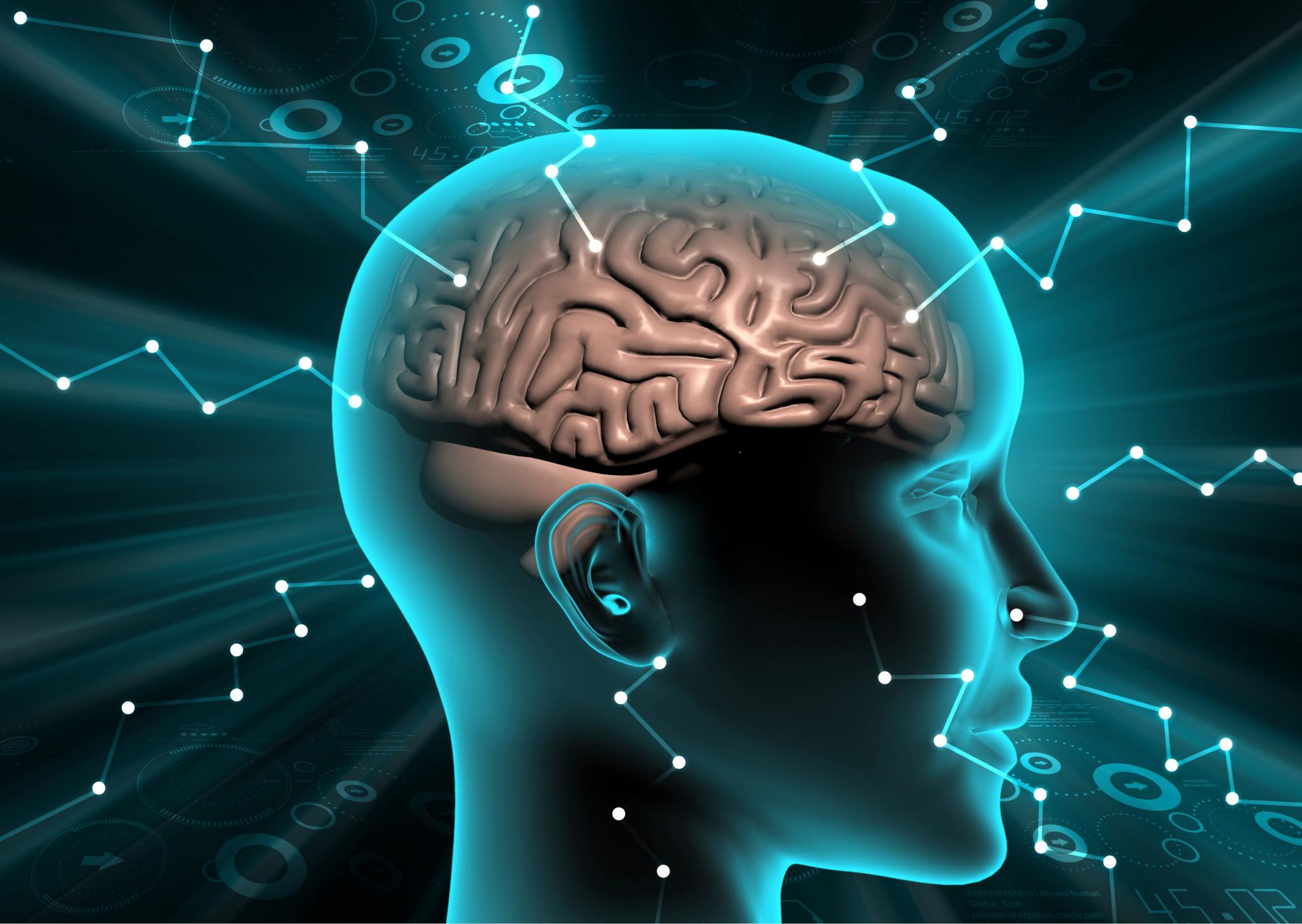 Inteligencia emocional y bienestar personal a lo largo de la vida